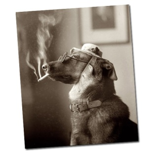 smokingdog